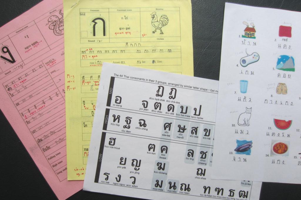 Luce Scholarship Language Training