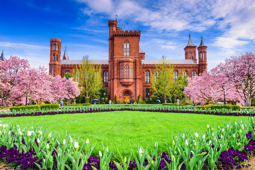 Fellowships at the Smithsonian
