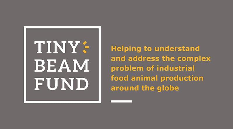 Tiny Beam Fund
